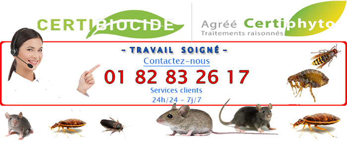 Insectes Bagneux